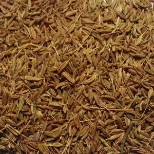 Graines de carvi zaatarzaatar for Plante zaatar